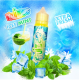 TPD - ICEE MINT de FRUIZEE 50ml
